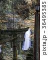 白糸の滝 36495385