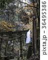 白糸の滝 36495386