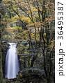 白糸の滝 36495387