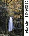 白糸の滝 36495389