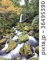 白糸の滝 36495390