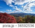 富士山 紅葉 秋の写真 36502536