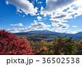 富士山 紅葉 秋の写真 36502538