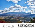 富士山 紅葉 秋の写真 36502539