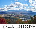 富士山 紅葉 秋の写真 36502540