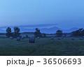 北海道 美瑛 畑の写真 36506693