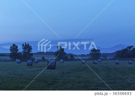 美瑛町の朝、北海道の風景シリーズ 36506693