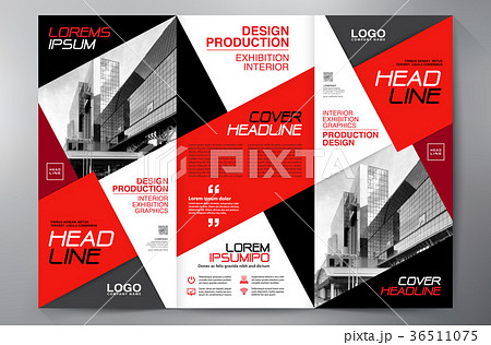 brochure 3 fold flyer design a4 template のイラスト素材 36511075