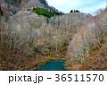 宝仙湖 湖 風景の写真 36511570