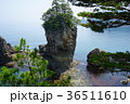 三陸ジオパーク 36511610