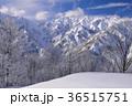 白馬 冬 雪山の写真 36515751