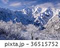 白馬 冬 雪山の写真 36515752