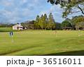 グランドゴルフ場 36516011