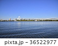 レインボーブリッジ お台場 海の写真 36522977