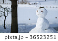 雪だるま7 36523251