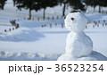 雪だるま10 36523254
