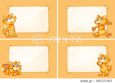 four border templates with cute catsのイラスト素材 36525365 pixta