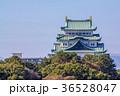 愛知県 秋の名古屋城 36528047