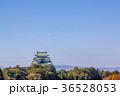 愛知県 秋の名古屋城 36528053