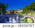 皇居外苑の二重橋(正門石橋) 36530767