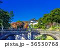 皇居外苑の二重橋(正門石橋) 36530768