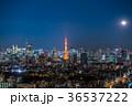 都市風景 東京 夜景の写真 36537222