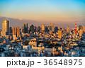 都市風景 都会 東京の写真 36548975