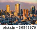 都市風景 都会 東京の写真 36548979