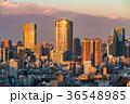 都市風景 都会 東京の写真 36548985