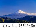富士山 富士 冠雪の写真 36549460