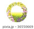 花の輪・2月・菜の花 36550669