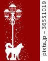 クリスマス わんこ 犬のイラスト 36551019