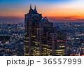 都市風景 都会 高層ビルの写真 36557999