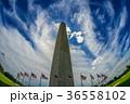ワシントン記念塔のイメージ 36558102