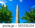 ワシントン記念塔のイメージ 36558104