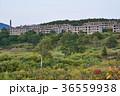 松尾鉱山 集合住宅 廃墟の写真 36559938