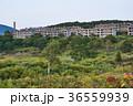 松尾鉱山 集合住宅 廃墟の写真 36559939