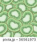 キウイ キウィ キーウィのイラスト 36561973