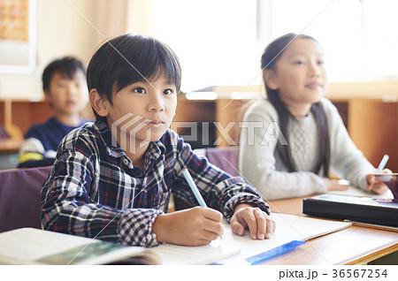 小学校 36567254