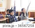 小学校 36567258