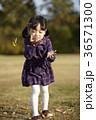 感情 可愛 落葉の写真 36571300