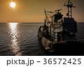 釣り フィッシング 魚採りの写真 36572425