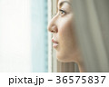 人物 女性 窓辺の写真 36575837
