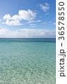 水平線と白い雲 36578550