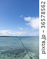 水平線と白い雲 36578562
