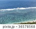 青い海 36578568