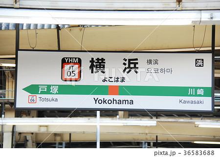 東海道本線(上野東京ライン)横浜駅(JT05)の駅名表示板(横浜市西区) 36583688