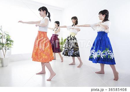 フラダンス教室 36585408