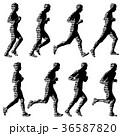 ランナー 走者 マラソンのイラスト 36587820