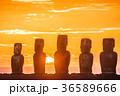 イースター島 モアイ像 石像の写真 36589666